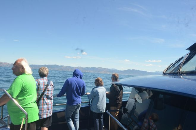 The Whale Watch Ticket and watching out for whales from the open deck of the boat.