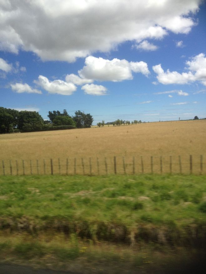 The sceneries along the way